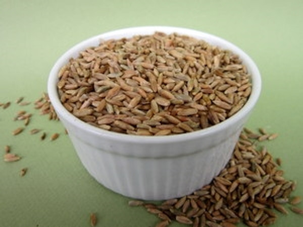 Rye Certified Organic Non-GMO Sprouting Seeds