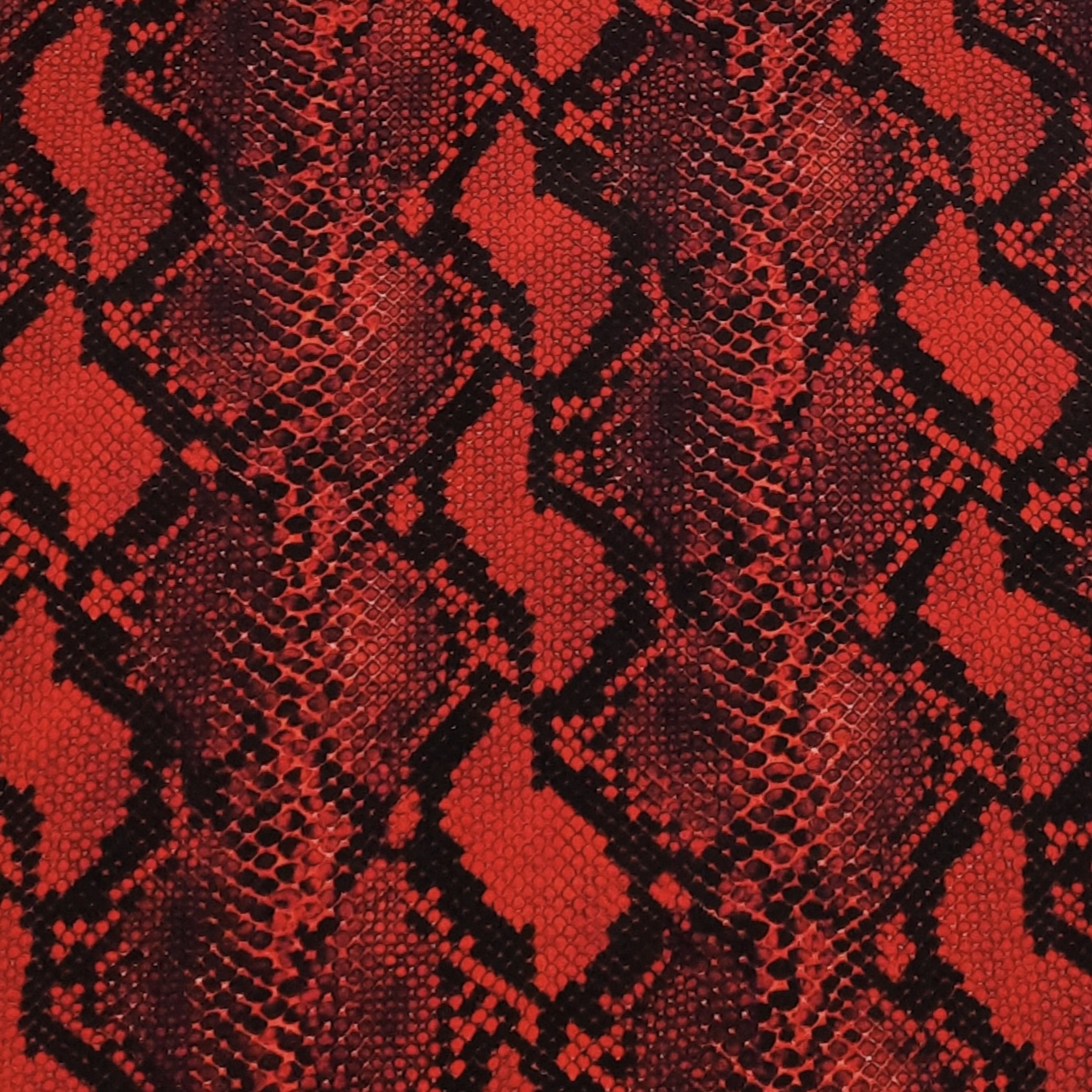 red-snakeskincropped.jpg