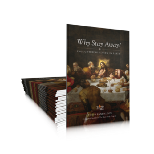 Why Stay Away – Companion to Bishop Barron's The Mass (20 Pack)