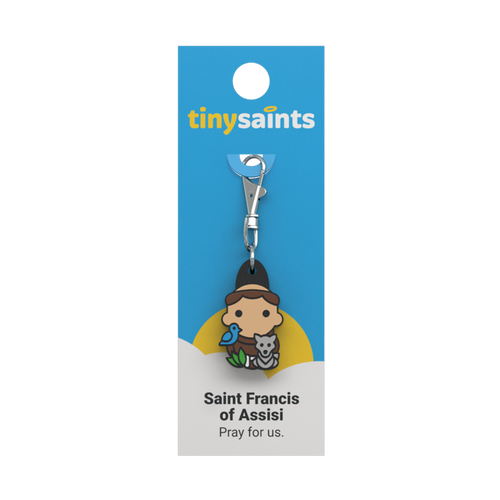 Saint Francis of Assisi - Tiny Saints Charm