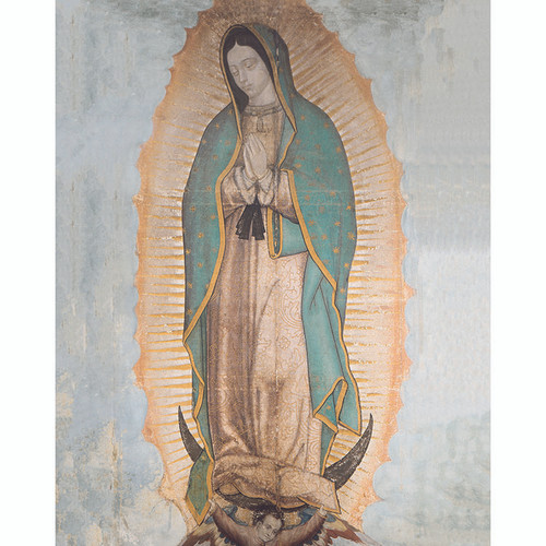 "Our Lady of Guadalupe - Canvas Print - 8"" x 10"""