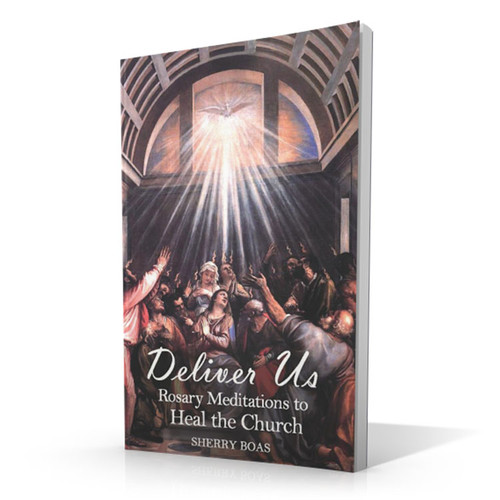 Deliver Us: Rosary Meditations to heal the Church