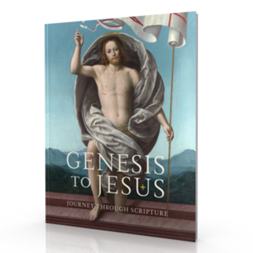 Genesis to Jesus - Leader Guide