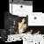 El Rey David - Kit Para Lideres DVD