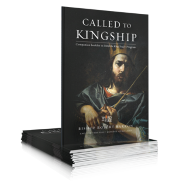 David the King - Called to Kingship Booklet (Pack of 20)