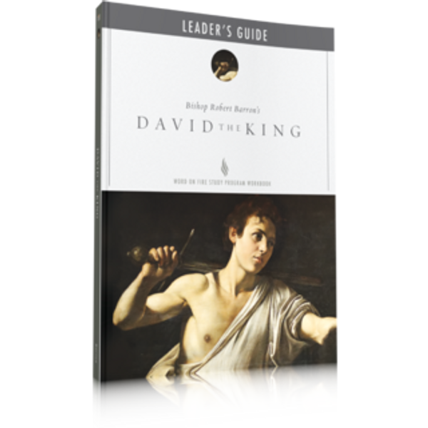 David the King - Leader Guide
