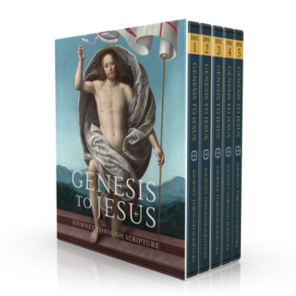 Genesis to Jesus - DVD Set