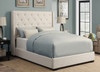 Contemporary Shelter  Upholstered Headboard Queen- DS-1927-250