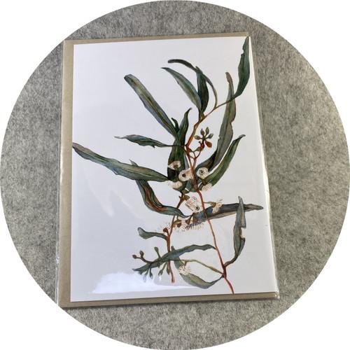 Elaine Camlin- Digitally printed gift cards featuring original watercolour designs