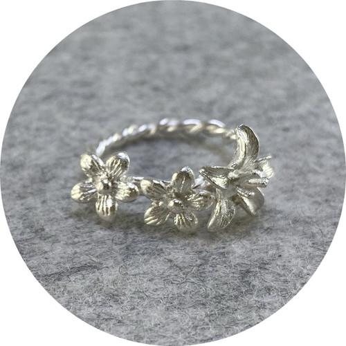 Ada Hodgson- Garland Ring. Sterling silver.