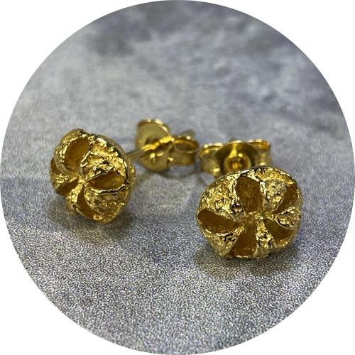 Manuela Igreja- Manuka stud earrings. Sterling silver and yellow gold plate.