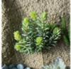 Sedum Album Succulent Faux Plants