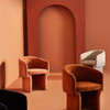 Amber Dining Chair