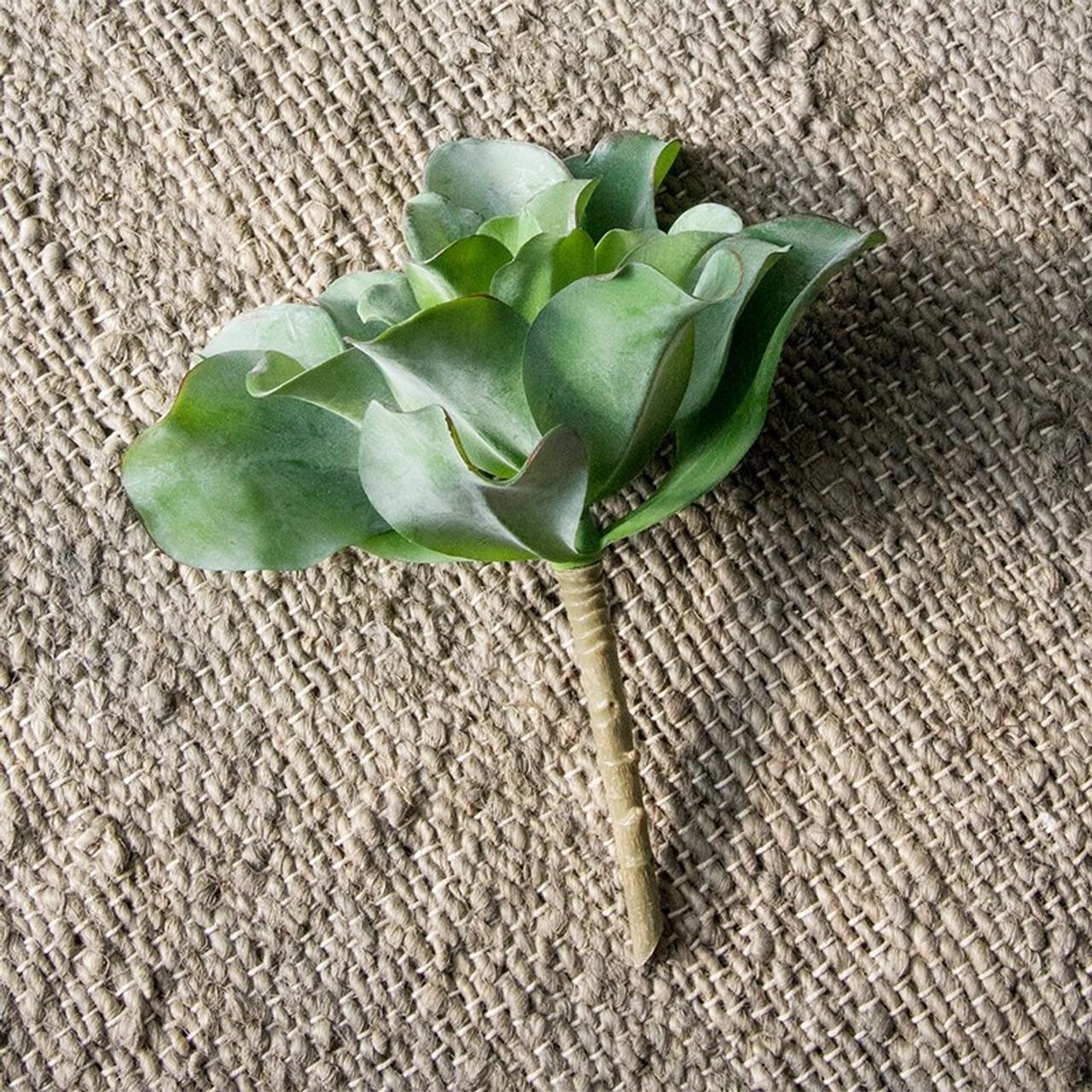 Kale Kalanchoe Succulent Faux Plants