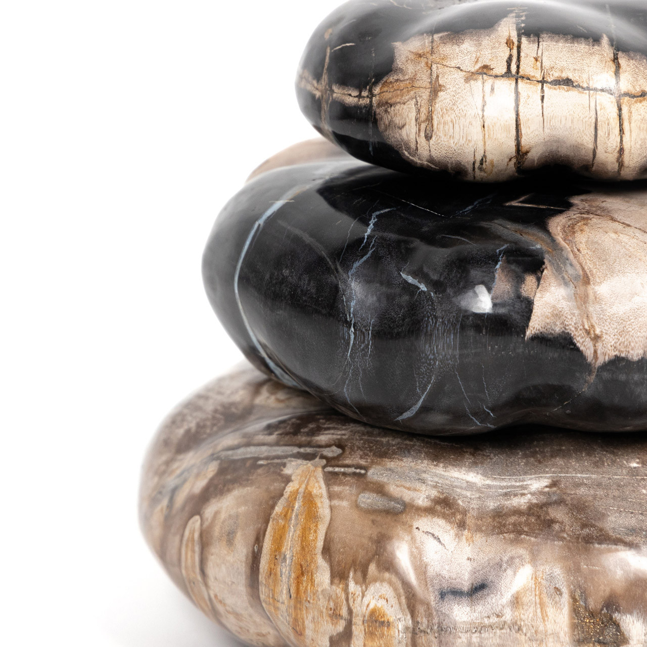 Petrified Wood Organic Sculpture - Dark