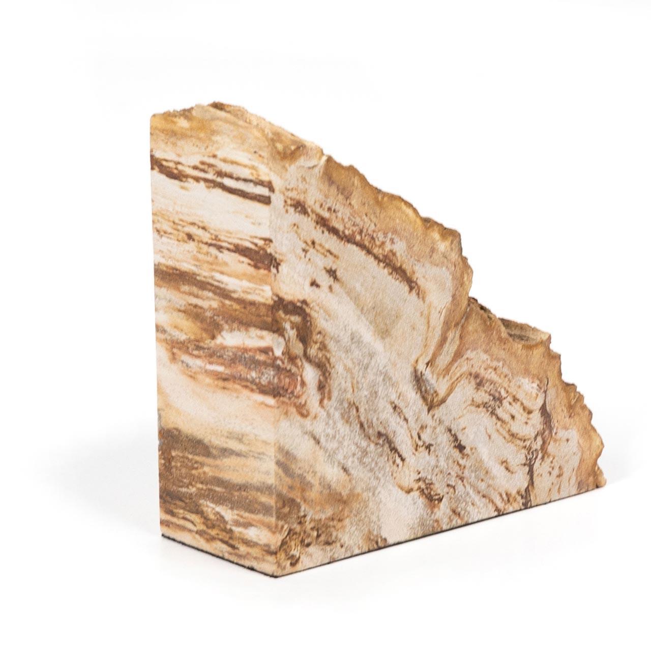 Petrified Wood Book Ends - Light