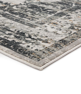 Distressed Tradition Cirque 27 Area Rug