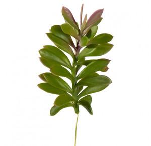 Jade Succulent Faux Plants