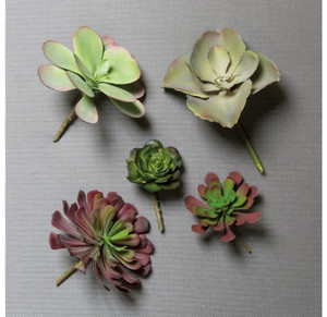 Echeveria Two-Tone Mini Succulent Faux Plants