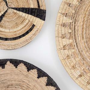 Gazania African Wall Hanging Baskets, Set of 5