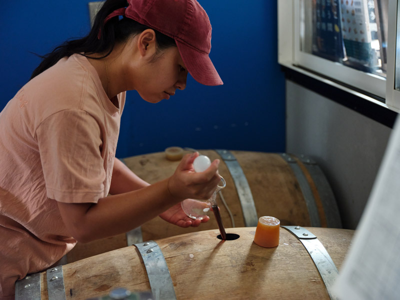 Checking the Barrels