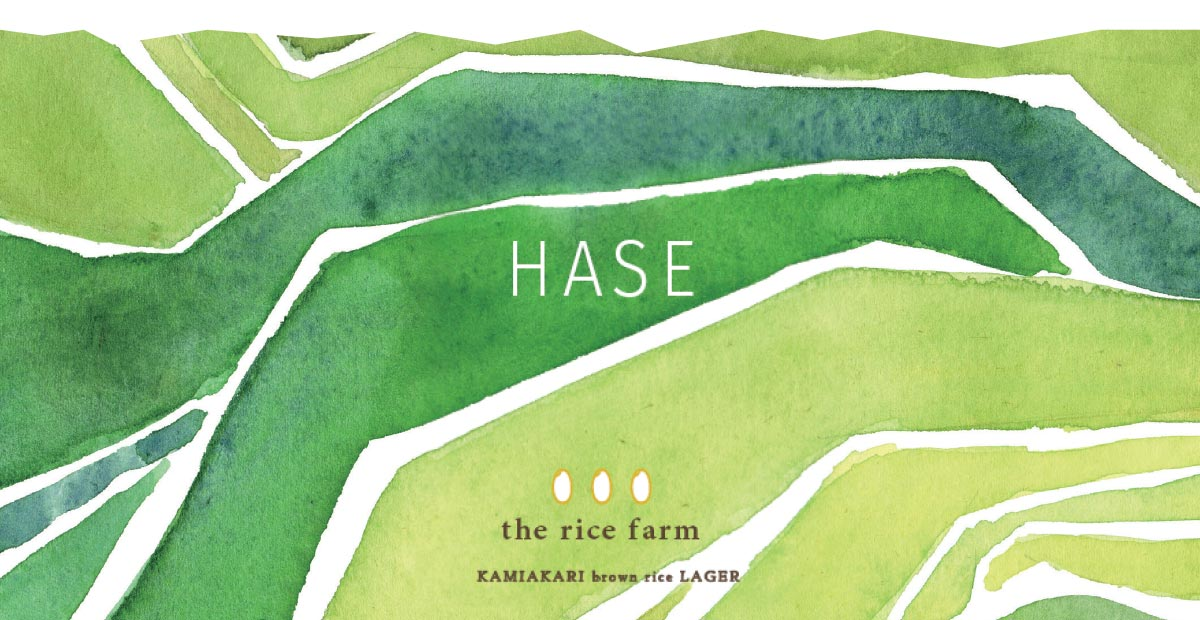 長谷で栽培される玄米の棚田を描写しています