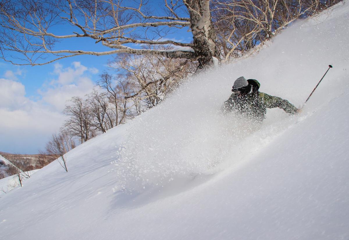 パウダースノーを軽やかに滑り降りるスキーヤー