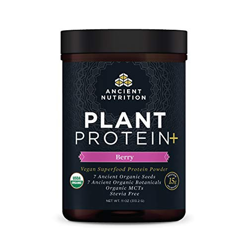 Ancient Nutrition Organic Plant Protein +, Vegan Plant Based Protein Powder, Berry, Formulated by Dr. Josh Axe, Dairy-Free, Gluten-Free, Non-GMO, No Sugar Added, Paleo Friendly Supplement 12.5 oz