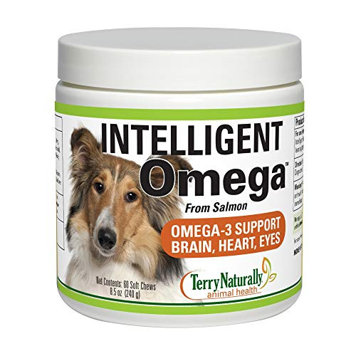 Terry Naturally Animal Health Intelligent Omega - 60 Soft Chews - Omega 3, Salmon Oil for Dogs, Promotes Brain, Heart & Eye Health - Canine Only - 60 Servings