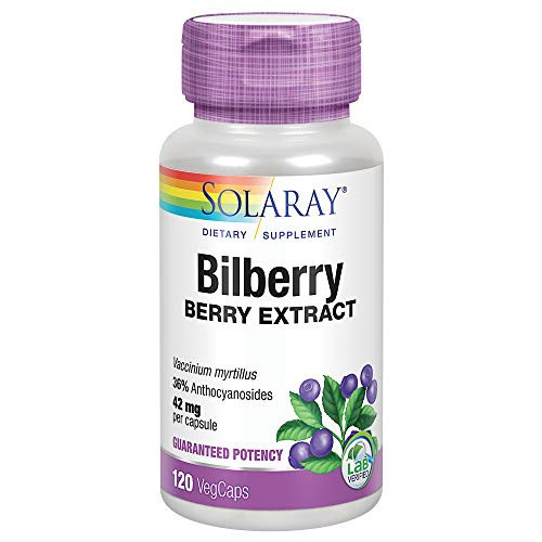 Solaray Bilberry Berry Extract 42 mg | Powerful Antioxidant | Healthy Vision & Circulation Support | 120 VegCaps