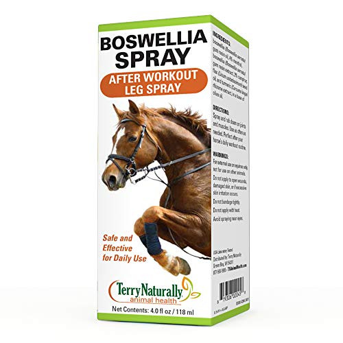 Terry Naturally Animal Health Boswellia Spray - 4 fl. oz. - Post Workout Leg Spray for Horses - Safe & Effective for Daily Application On Joints & Muscles - for Equines Only