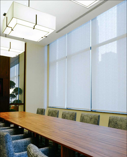 Ecotron Sheer Light Filtering Roller Shades white fabric texture in conference room