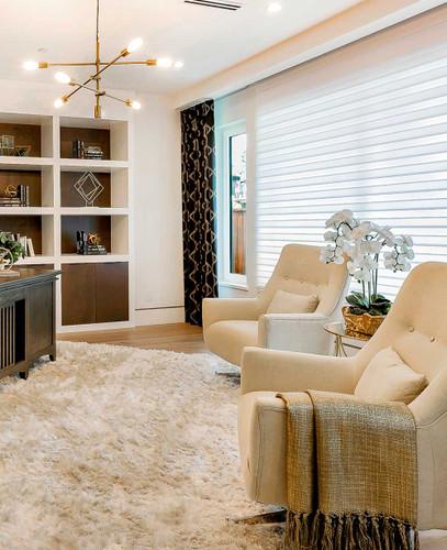 Zebra Basic Dual Sheer Light Filtering Roller Shades in Living room