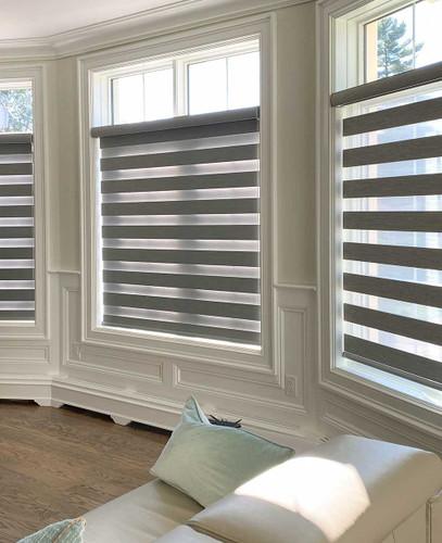 Premium Room Darkening Zebra Dual Sheer Blackout Roller Shades in Living room - Light Grey Color