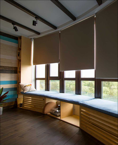 Blackout (100% Light Blocking) Fabric EZRise & FREE Valance Roller Shades in living room
