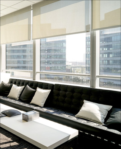 Solar 5% Openness Indoor/Outdoor Solar Fabric EZRise & FREE Valance Roller Shades