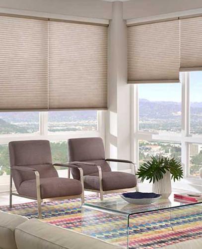 Honeycomb Basics Bottom Up Light Filtering Cordless Shades in living room