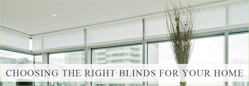 Choosing the Perfect Blind 101