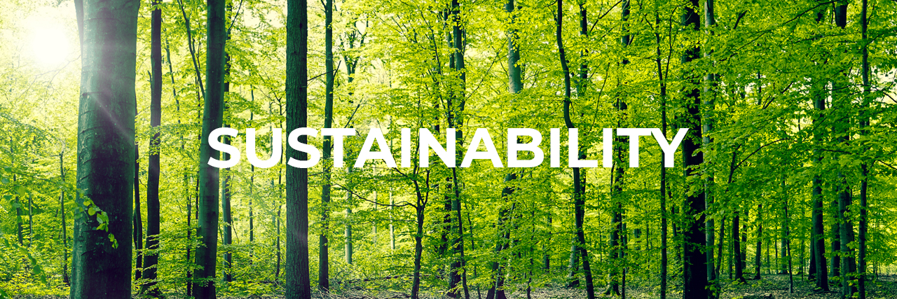banner-sustainability-forest.jpg