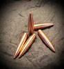 178gr Hunting bullet