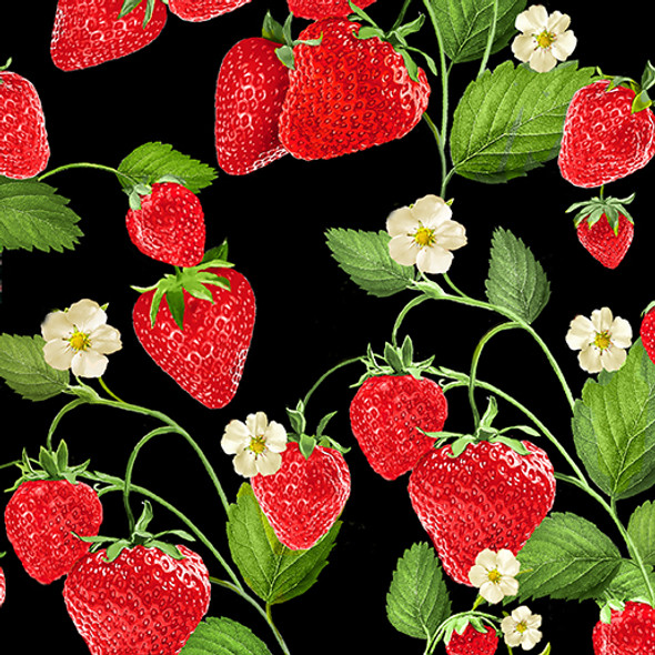Strawberries and blossoms on a black background.