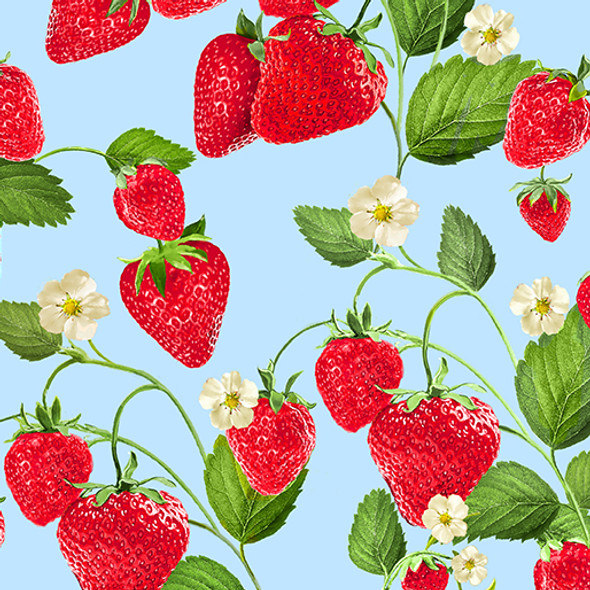 Strawberries and blossoms on a pale blue background.