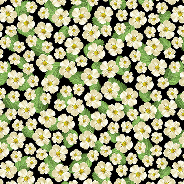 Strawberry Flowers on a pale black background.