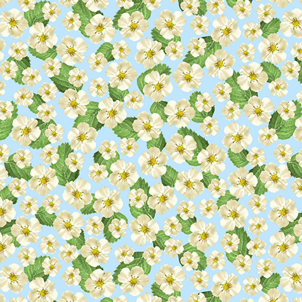 Strawberry Flowers on a pale blue background.
