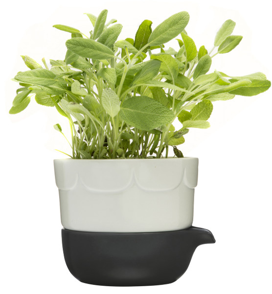 Green double-barelled growing pot