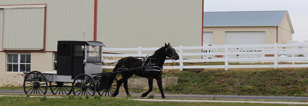 Breezesta Factory Horse Buggy Pennsylvania