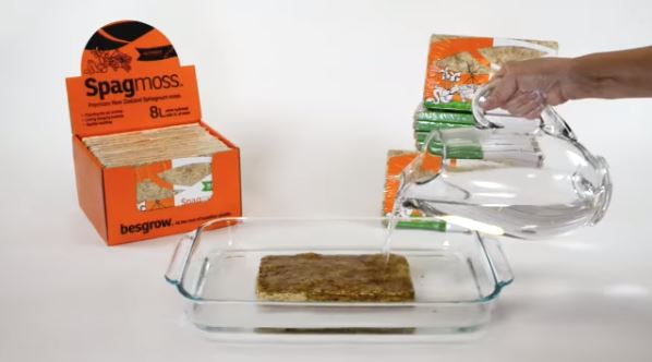 BESBROW - Sphagnum Moss Rehydration