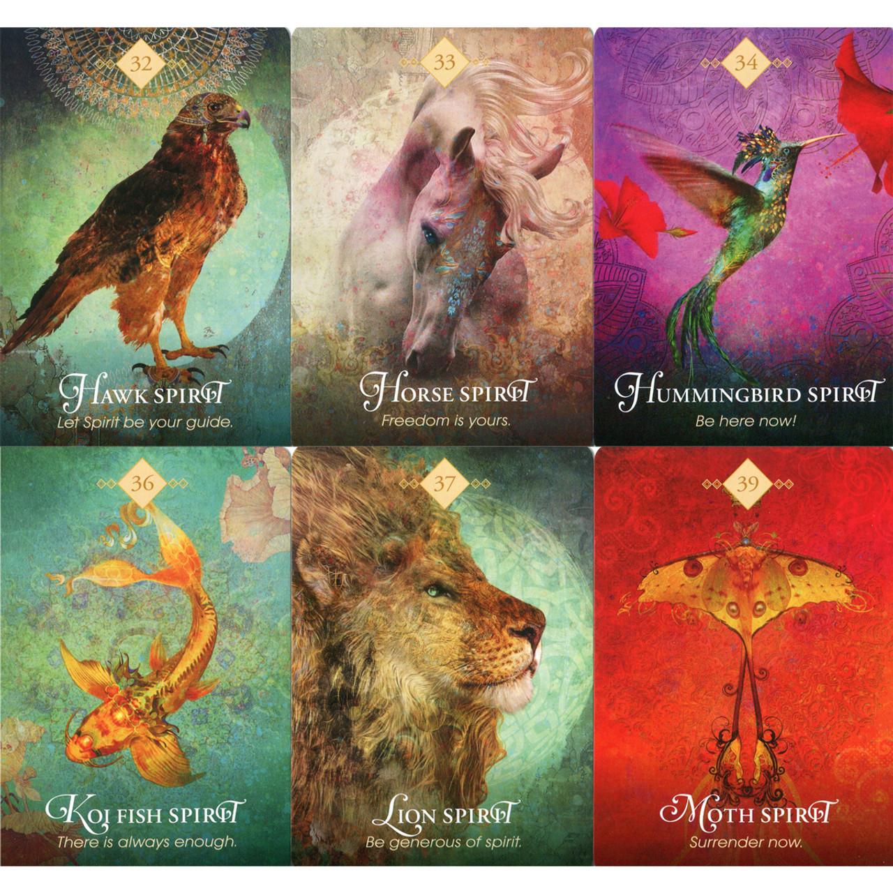 The Spirit Animal Oracle | Colette Baron-Reid | Holisticshop