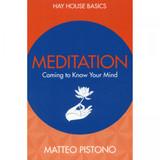 Meditation (Basics Series) by Matteo Pistono
