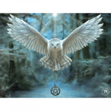 Awake the Magic Canvas Plaque (19 x 25cm) by Anne Stokes